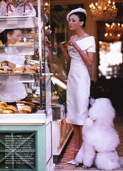 French Poodle and Pastry