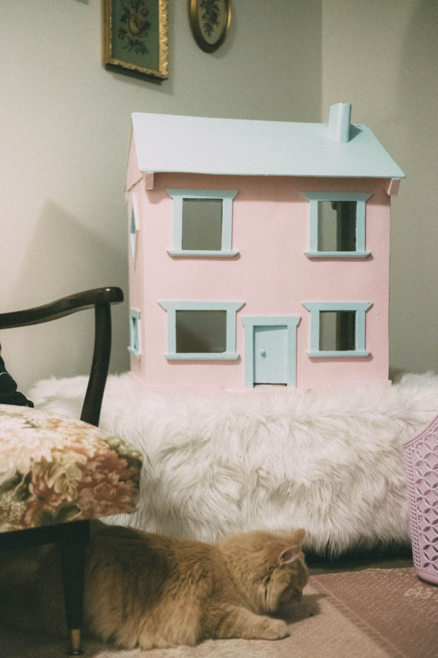 Canadian Tire, Premier Paint, Cat House, Doll House, DIY