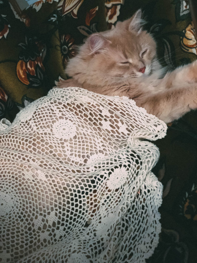 Pinky, vintage couch, doily