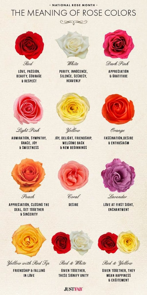 the meaning of rose colours