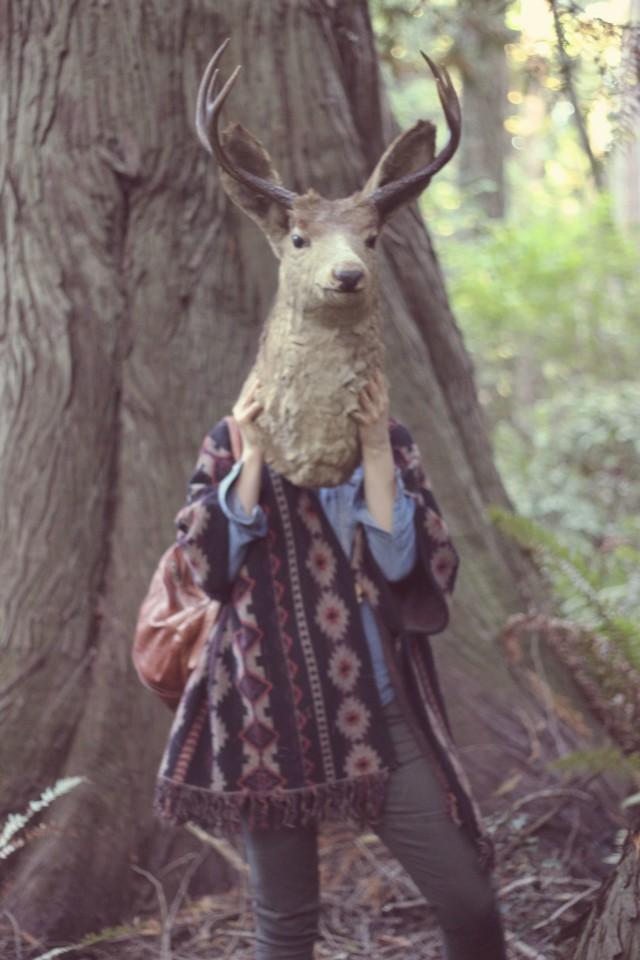 deer3