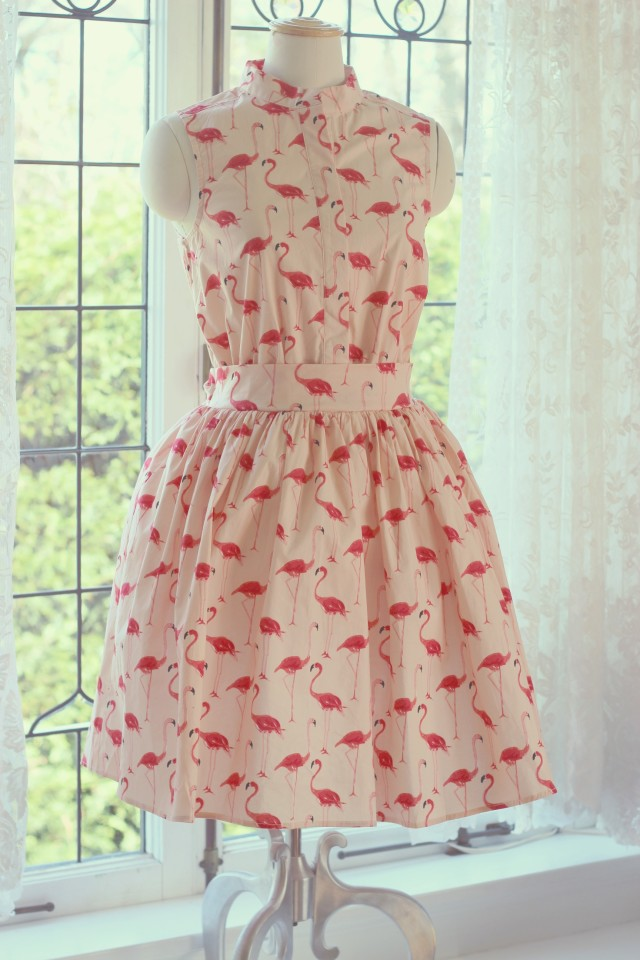 Chic Wish Flamingo Dress, Spring Fashion, Cute Dresses, Fashion Blogger