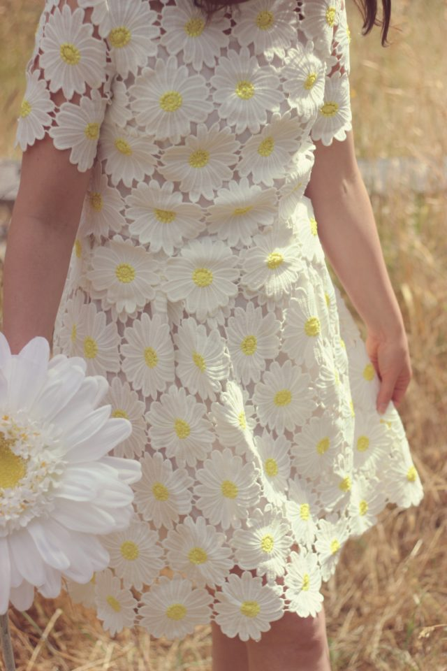 Chic Wish Crochet Daisy Dress