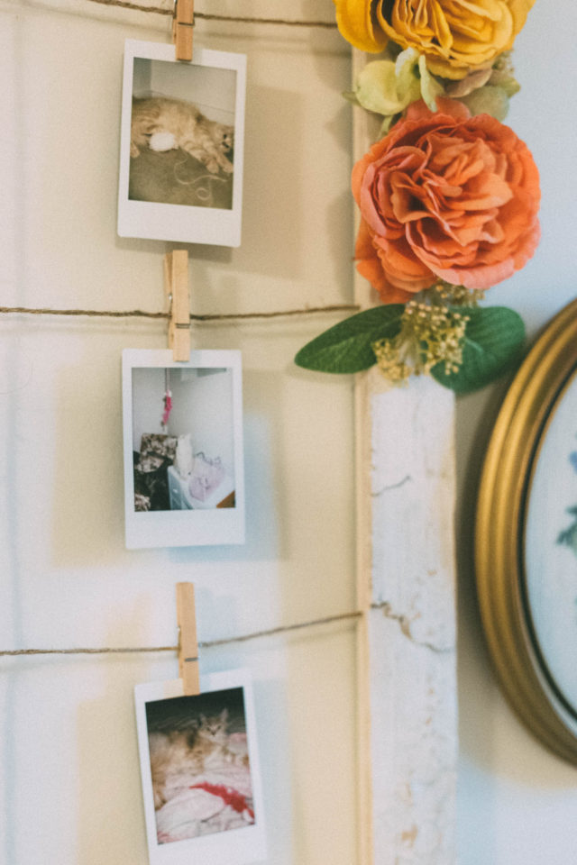 Diy Floral Photo Hanging Frame From Pier 1 Imports