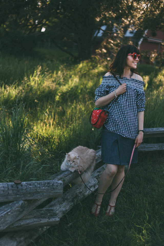 Chic Wish, Cold Shoulder Gingham Top, Red cat Eye sunglasses, Denim Skirt, Red Cat Eye Sunglasses, Yumi