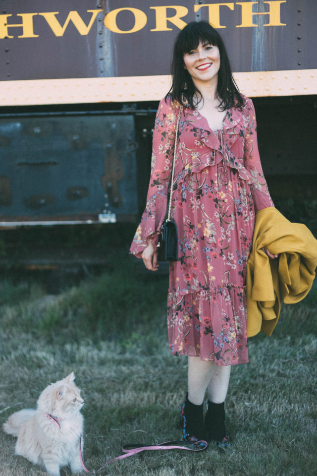 Portia Ruffle Midi Dress, Ever New Melbourne, Judy crombie, Sara Embroidered Small Bag, Billy Embroidered Boots, Fall Fashion, Vintage, Train, Pinky, Cat, Kitten,