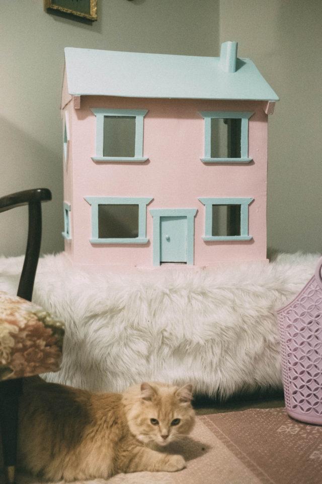 Canadian Tire, Premier Paint, Cat House, Doll House, DIY