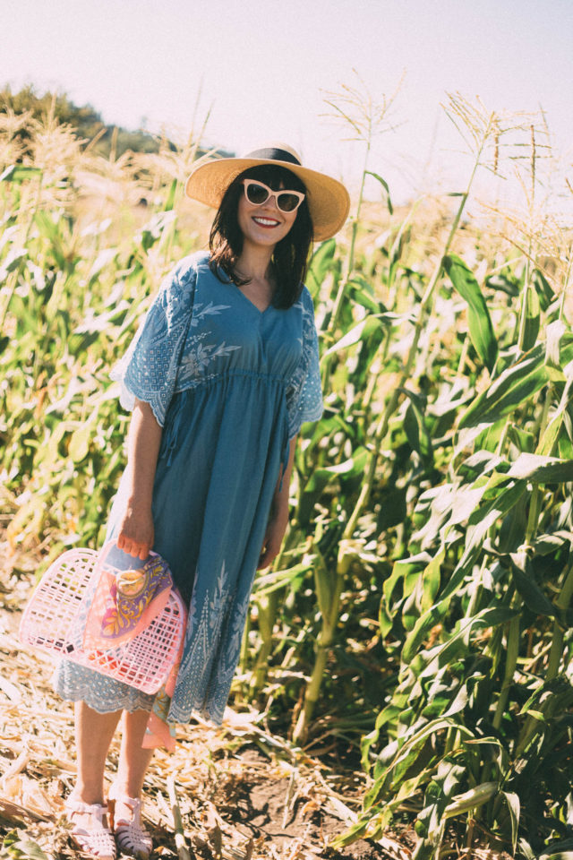 Across the Fields Embroidered Dress in Blue, Chic Wish, Le chateau, Straw hat, vintage, summer, fashion, retro, sun Jellies,
