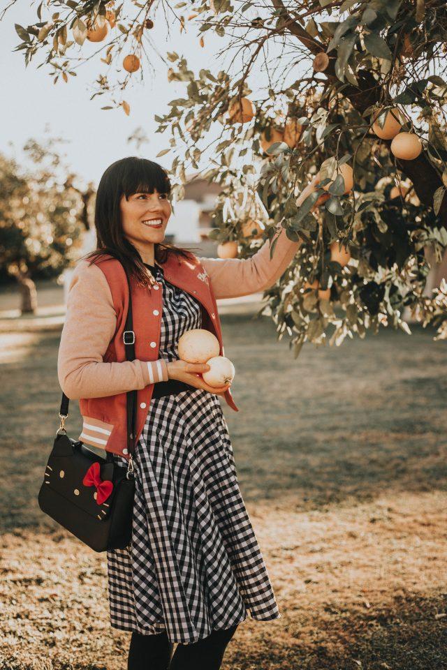 Unique Vintage, Gingham Dress, Joanie Clothing, vintage varsity jacket, Hello Kitty for Modcloth, Grapefruit picking Arizona, Phoenix, Citrus picking,