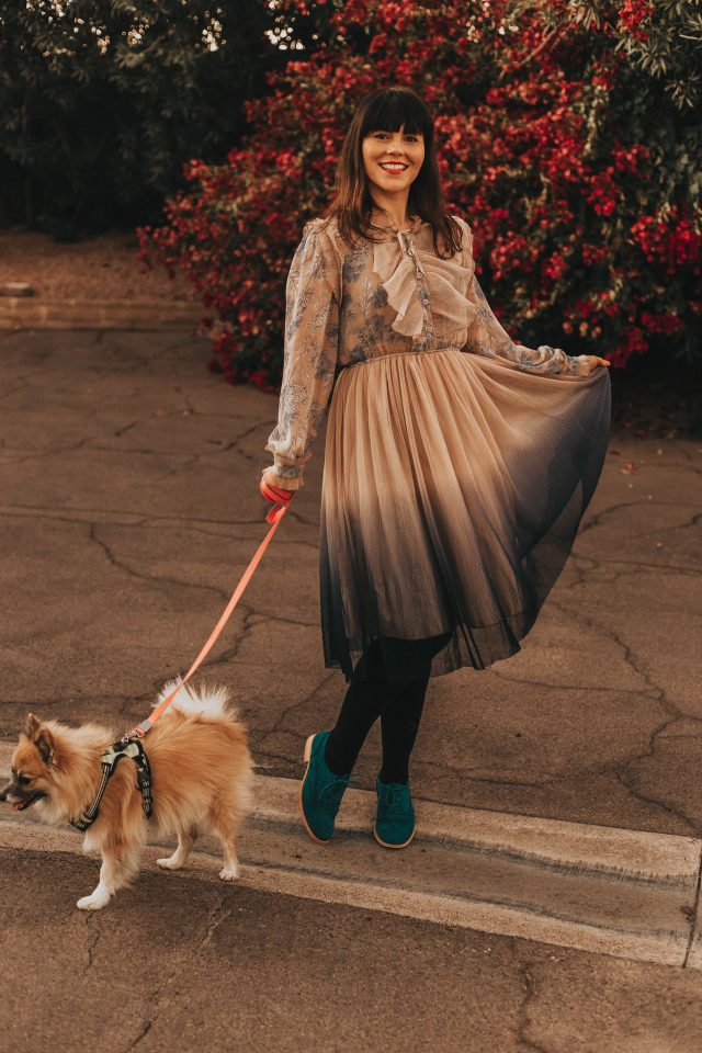 We Know It All Gradient Long Sleeves Pleated Mesh Tulle Dress, Chic Wish, Pomeranian, Feminine vintage inspired Spring Fashion , Modcloth,