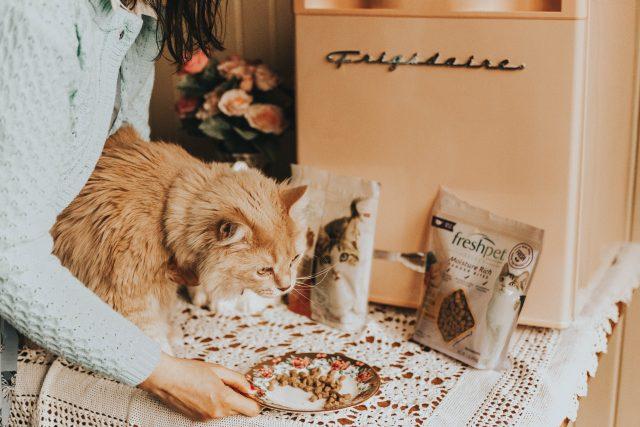 Fresh Pet, refrigerated natural cat food, 100% natural grain free, refrigerated cat food, healthy cat food,