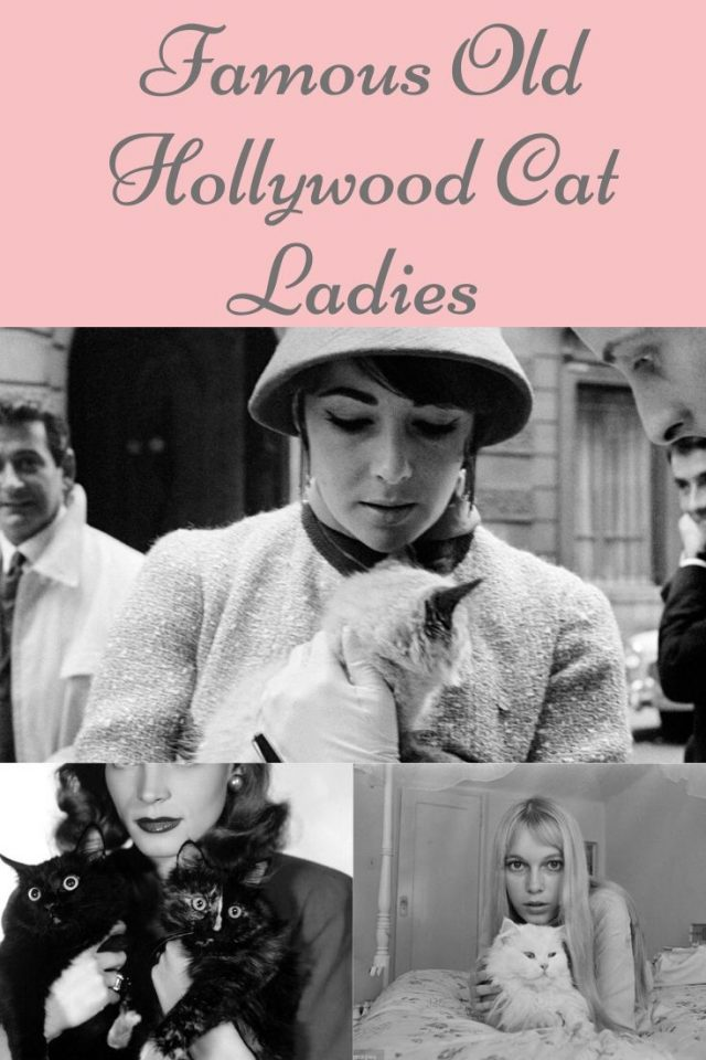 old hollywood cat ladies, vintage cat ladies, famous old hollywood cats, famous cats,